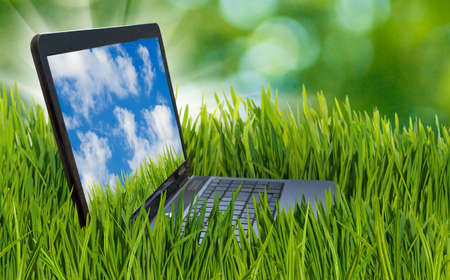 Image of laptop in the grass. The laptop represents a business theme. laptop in the grass in the summer garden. Sky and clouds on the laptop screen. Reklamní fotografie