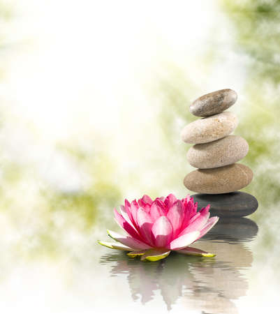 石と水に蓮の花のイメージ。