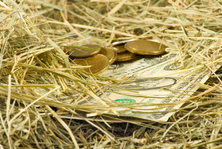Image of dollars money on hay closeup, Many dollars and coins on the dry grass,