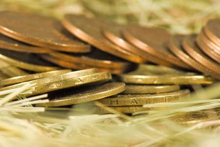 Imagen de monedas de dinero en el heno close-up