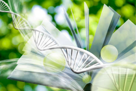 image of book on DNA chain background. 3d illustration Stock Photo