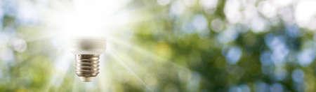 light bulb on green background closeup Stock Photo