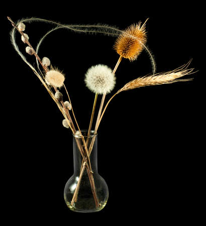 Isolated image of dried flowers in vase Stock Photo