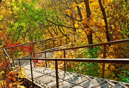 image of stairs in autumn park
