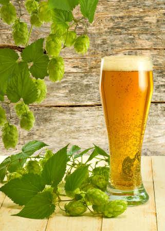 image of mug with beer and hops closeup Stock Photo