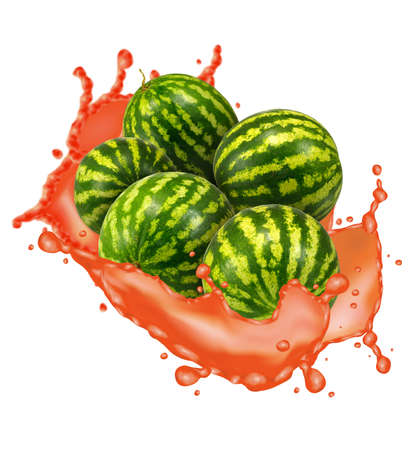 isolated image of watermelon on white background
