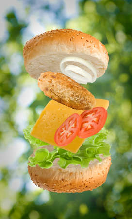 Isolated image of a sandwich on a white background