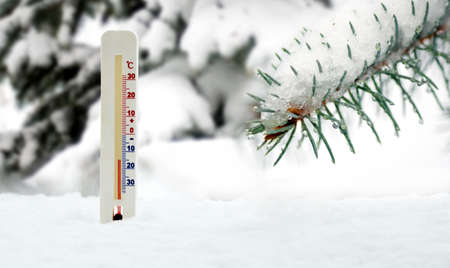image of thermometer on snow and fir branch background