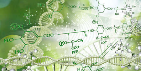 DNA chain on a blurred background with chemical formulas. 写真素材