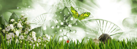 Abstract dna molecules together with a butterfly, snail and ladybug on a background of a fantastic landscape. 写真素材