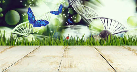 Abstract dna molecules together with a butterfly, snail and ladybug on a background of a fantastic landscape. Image of wooden boards in the foreground Stok Fotoğraf