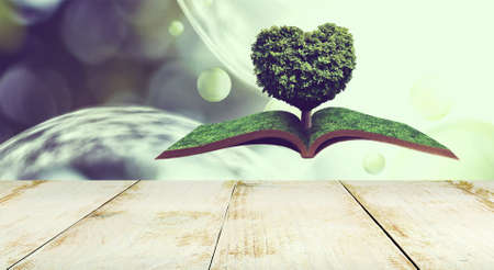 stylized image of a heart-shaped tree on an open book on an abstract background