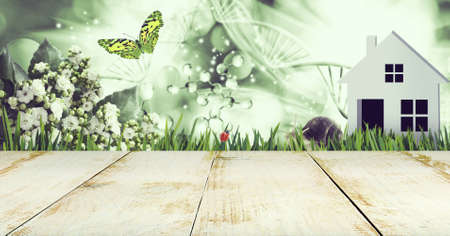 Abstract dna molecules together with a butterfly, snail and ladybug on a background of a fantastic landscape. Image of wooden boards in the foreground 写真素材