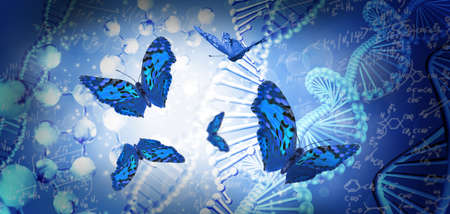image of butterflies on dna chain background