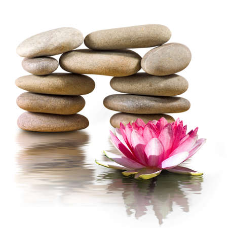 isolated image of lotus flower and stones
