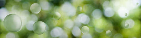 Image of green stylized balls on a beautiful abstract blurred natural background
