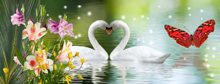 image of beautiful flowers and swans on the water close up