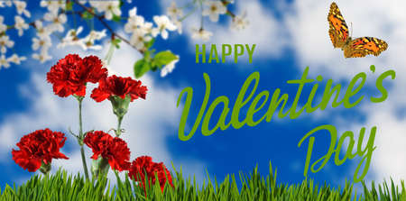 happy valentines day with beautiful festive flowers on colorful background