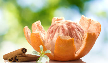 peeled grapefruit with flower and cinnamon sticks on a green blurred background Imagens - 139776969