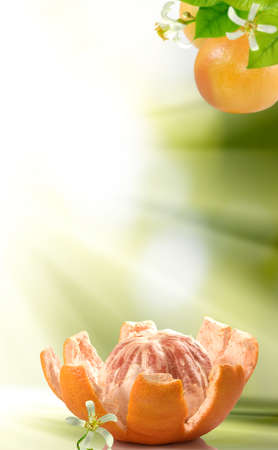 image of peeled grapefruit with a flower on a green blurred background Imagens - 139786263