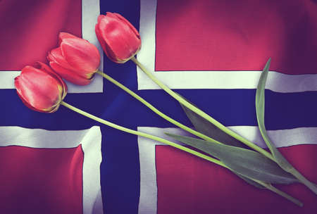 Vintage image of the flag of Norway with three red tulips.