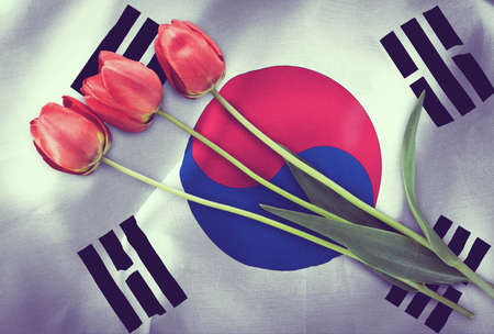 Vintage image of the flag of South Korea with three red tulips.