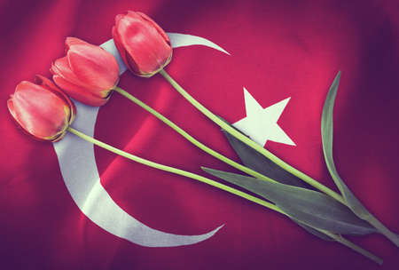 Vintage image of the flag of Turkey with three red tulips.