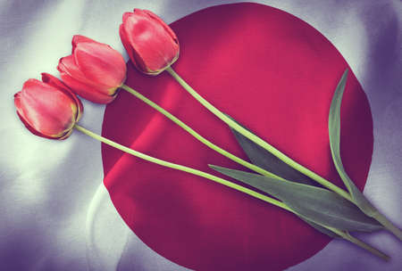 Vintage image of the flag of Japan with three red tulips.