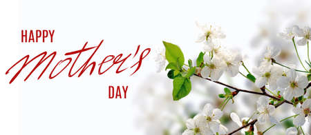 Mothers day greeting card with flowers Imagens