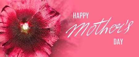 Mothers day greeting card with flowers and a greeting inscription