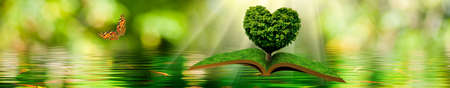 flying open book and a butterfly. Tree in the form of a stylized heart on a book on a background of a water surface Stockfoto