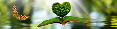 flying open book and a butterfly. Tree in the form of a stylized heart on a book on a background of a water surface Imagens