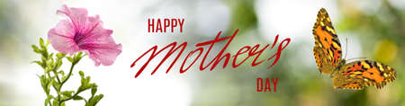 image of flowers and a flying butterfly. Happy Mothers Day