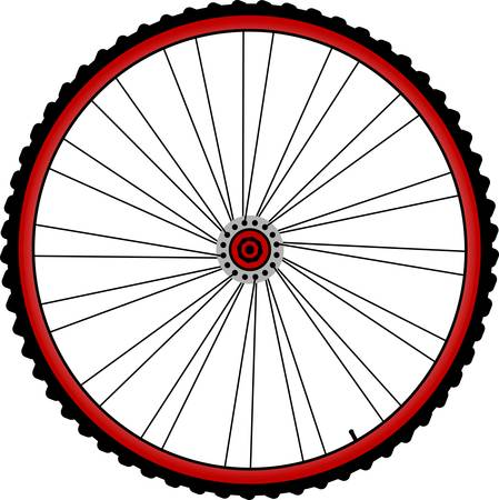 spinning wheel: bicycle wheels with spokes and tires isolated on white