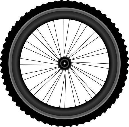 bike parts: Bike wheel - vector illustration isolated on white background