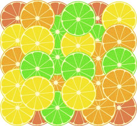 fruits of an orange, a lemon, grapefruit and lime Vector