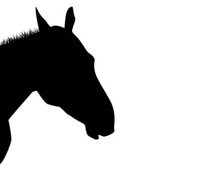 paardenhoofd: Een silhouet van een paard hoofd geà ¯ soleerd op wit Stock Illustratie