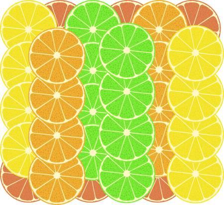 lemon lime: modello di agrumi sfondo - pompelmo, limone, lime Vettoriali