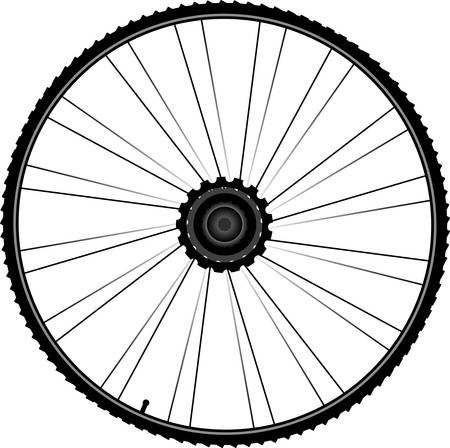 trail bike: black bike wheel with tire and spokes isolated on white background