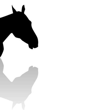 sillhouette: sillhouette of a horse head with reflection