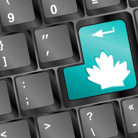 energy key with leaf icon on laptop keyboard Stock Photo - 17918287