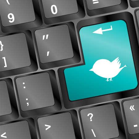 white bird silhouette on computer pc keyboard Stock Photo - 17918279