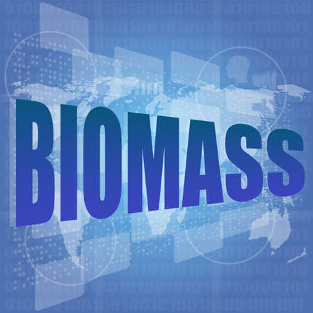 Biomass: safety concept: words biomass is a marketing on digital screen