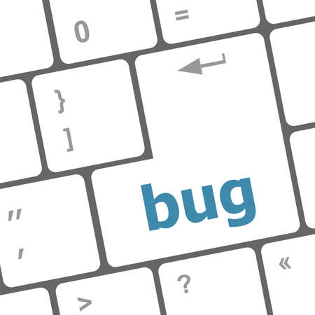 stick bug: Computer keyboard with bug key. business concept