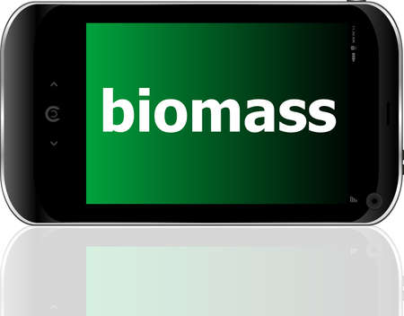 biomass word on smart mobile phone, business concept photo