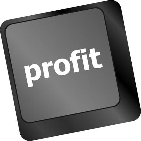 Profit key showing returns for internet businesses photo