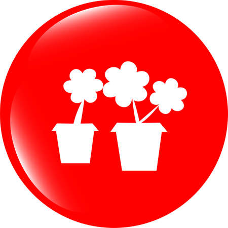commercial tree care: Flowerpot with plant - web icon isolated