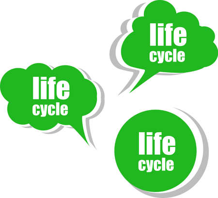life cycle. Set of stickers, labels, tags. Template for infographics photo