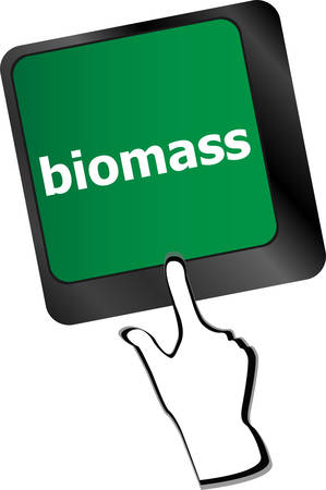 biomass: Keyboard keys with biomass word buttonvector