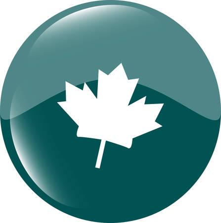 maple leaf icon: maple leaf icon glassy web button
